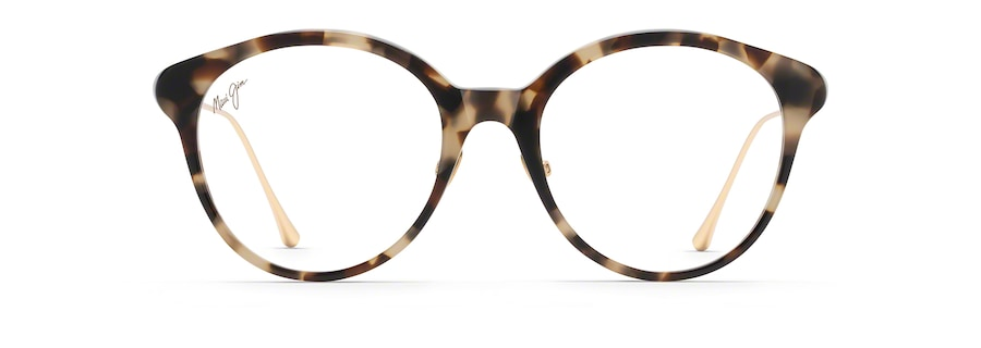 Tokyo Tortoise with Gold temples MJO2222 front view