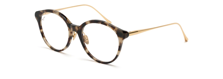 Tokyo Tortoise with Gold temples MJO2222 angle view