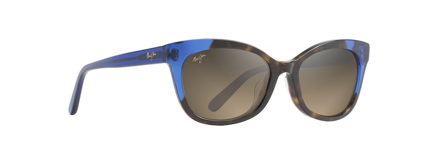 Dark Tortoise with Electric Blue ILIMA angle view